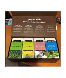 Nurs Lokman Hekim Yeşil Çay Bitki Çayı Süzen Poşet 20'li Çay